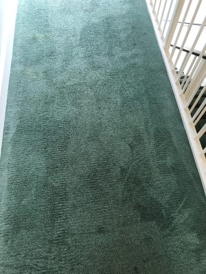 A carpet after it was cleaned