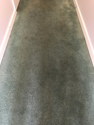 A carpet before it was cleaned